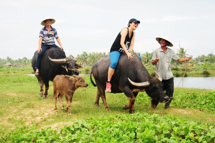 Hoi An – Buffalo ride adventure & Basket Boat