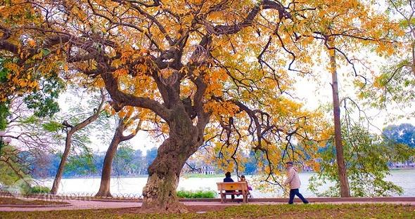admiring-the-beauty-of-hanoi-in-autumn-1