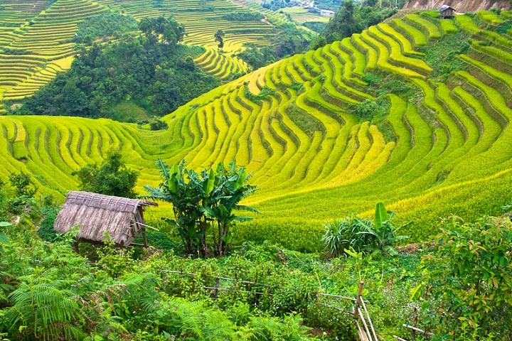 Mai Chau Adventure