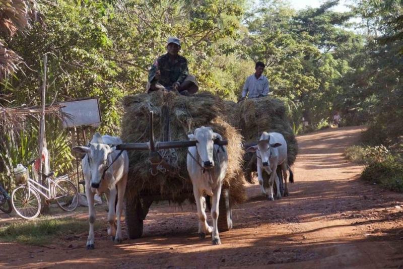 Siem Reap Farming Life 6D5N