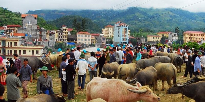 2 days 1 night Sapa – Bac Ha market (Depart on every Saturday)