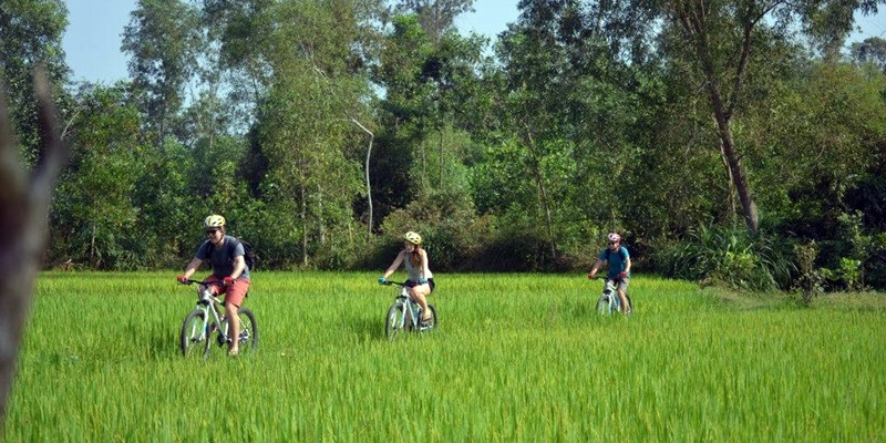 Traditional Countryside Cycling Tour
