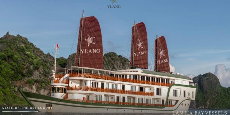 YLang Cruise